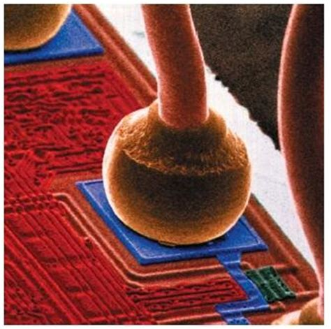 Integrated Circuit Body Parts Substance