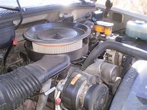 Chevrolet 1991 Fuel Filter Location : 1991 gmc sierra sle1500 crew cab classic 4x2 not chevy ~ A.2002-acura-tl-radio.info Haus und Dekorationen