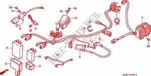 Wire Harness For Honda Trx 300 Fourtrax 4x4 1992   Honda