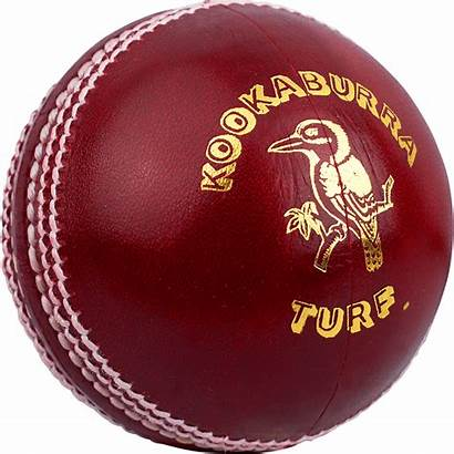 Cricket Ball Kookaburra Balls Different Types Turf