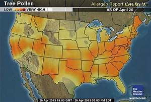 Tree Pollen Counts Stay Very High; Grass Pollen Makes Its ...