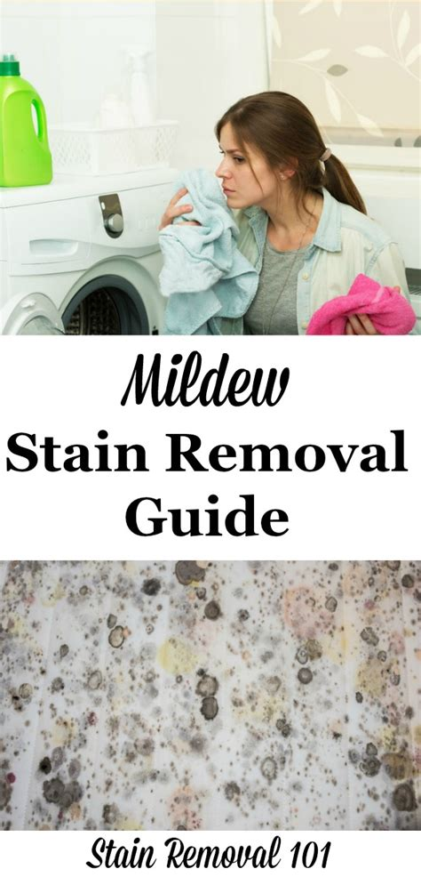 Mildew Stain Removal Guide