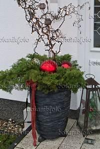 Fugen Wasserdicht Machen Außen : die besten 25 weihnachtsdeko aussen ideen auf pinterest ~ Lizthompson.info Haus und Dekorationen
