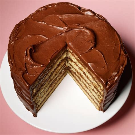 yellow layer cake  chocolate sour cream frosting