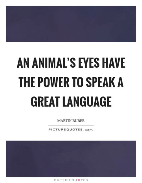 An Animal's Eyes Have The Power To Speak A Great Language