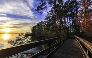 lake, , bridge, , landscape, , trees, , hdr, , sunrise, , sunset