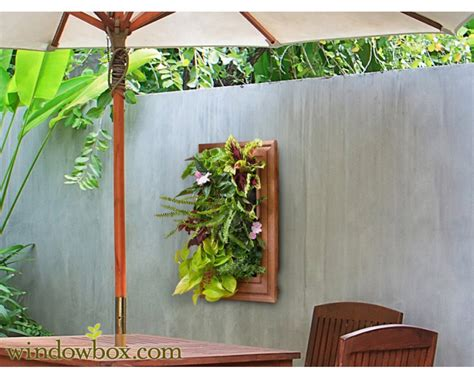 Indoor Vertical Garden Kit diy living wall systems vertical garden kits windowbox
