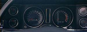 Second Generation Camaro Group