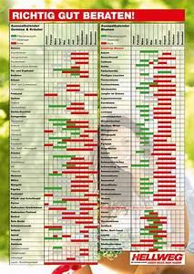 Aussaatkalender 2017 Pdf : hellweg die profi baum rkte aussaatkalender ~ Whattoseeinmadrid.com Haus und Dekorationen