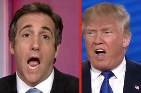 Image result for michael cohen trump lawyer images