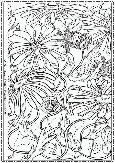 1000 images about flowers coloring pages for adults on