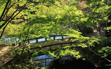travel japan beautiful fall scenery  rokkosan