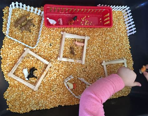 farm activities ms s preschool 682 | Farm Animal Activities in the Preschool Classroom Farm Sensory Bin 1024x803