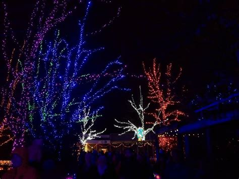 zoo lights at the oregon zoo lil bit