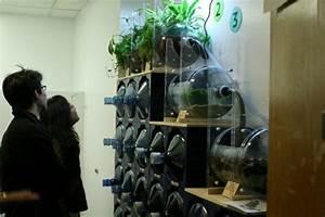 Nyu Itp Students Develop Bioremediation Bathroom