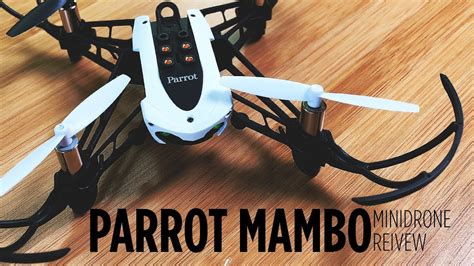 parrot mambo mission minidrone review youtube