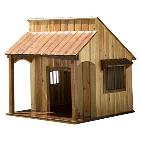 house dogs advantek saloon house houses at hayneedle