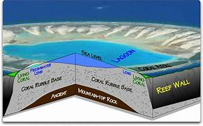 atoll used for the photo in this example is Tepoto Atoll  French  Atoll Island Definition