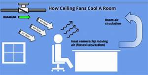 How Much Electricity Does A Ceiling Fan Use  A Helpful