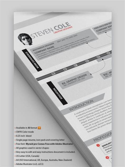 Visual Resume Sles by 25 Top Visual Cv Resume Templates For The Best Creative