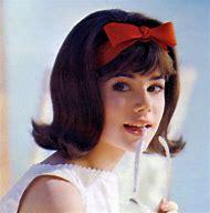 60s Flip Hairstyles