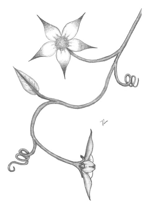 Best Sketches Of Flowers Ideas And Images On Bing Find What You