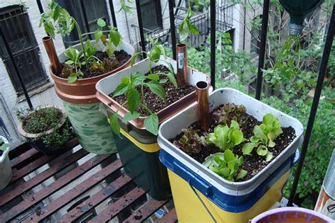 12 Innovative Self Watering Planters Ideas And Tutorials