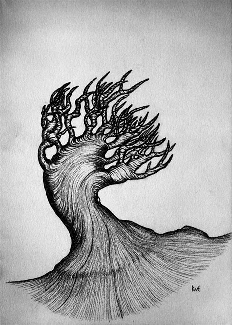 Pictures Black Pen Drawings Nature Art Gallery