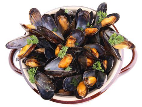 cuisine moules moules marinières la recette des moules marinières