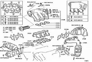 Lexus Parts List