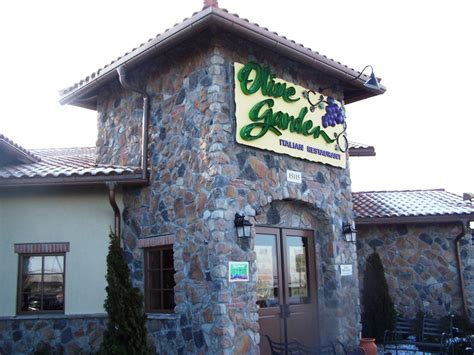 olive garden findlay ohio olive garden findlay oh
