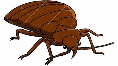 Bed Bug Clipart Clip Bedbug Right Cartoon