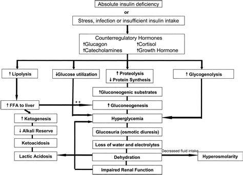 Diabetic Ketoacidosis In Infants Children And
