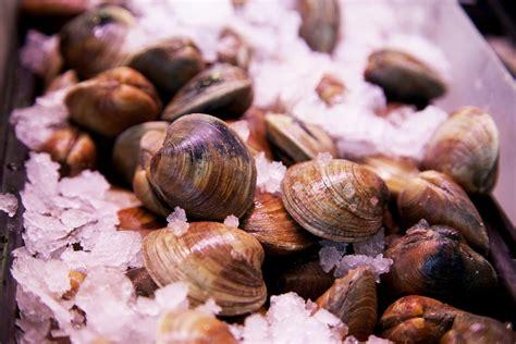 clams hard shelled farmed santa monica seafood