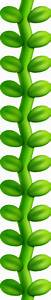 Image Beanstalk NSMB2png Fantendo The Video Game