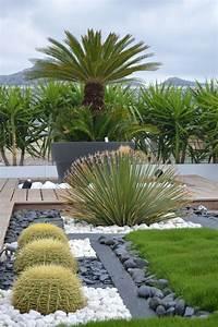 les 25 meilleures idees concernant cactus jardin sur With charming idee de massif de jardin 8 les 25 meilleures idees concernant jardins zen sur