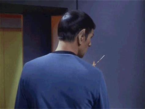 joey star trek spock unicorn dog soren    babby