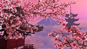 Cherry Blossom Wallpaper for Desktop - WallpaperSafari