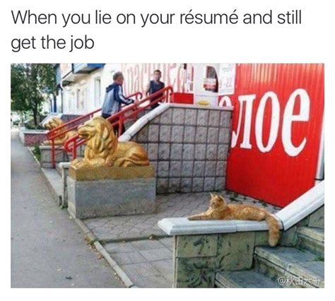 How To Lie On A Resume And Not Get by When You Lie On Your Resume But Still Get The