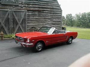 Ford Mustang 1964 : top 10 mustangs of all time 2 1964 mustang onallcylinders ~ Medecine-chirurgie-esthetiques.com Avis de Voitures