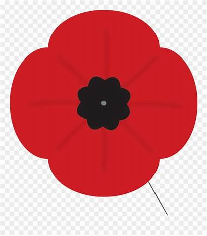 Poppy Remembrance Clip Clipart Armistice Canada Pinclipart