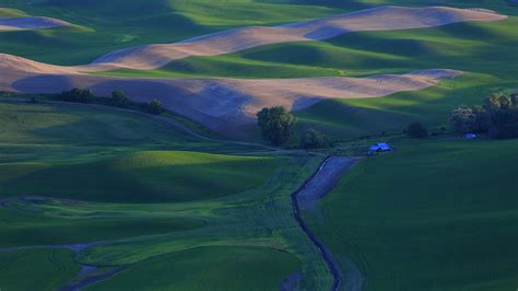 wallpaper beautiful countryside green wheat fields
