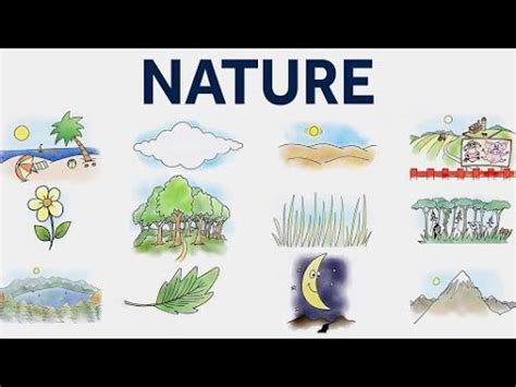 Learn Nature  Nature Vocabulary For Kids  Pre School Learning And Educational Videos For Kids