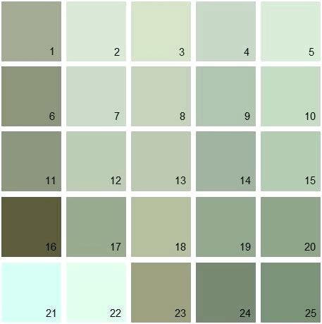 Light Sage Green What Color Is Sage Best Sage Green Paint