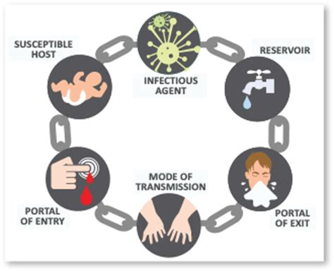 chain  infection summary links  chain  infection