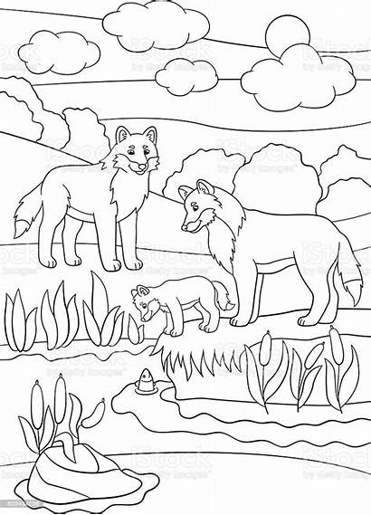 Mother Father Coloring Wolves Activity Animal Wildlife