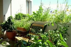 Jardin Et Balcon : balcon jardin les plantes et le choix d 39 emplacement ~ Premium-room.com Idées de Décoration