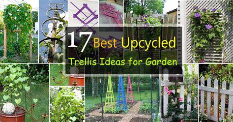 17 Best Upcycled Trellis Ideas For Garden  Cool Trellis Designs For Gardens  Balcony Garden Web