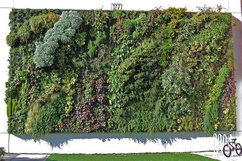 Vertikale Gärten  Grüne Pflanzenwände Gegen Alltagsgrau