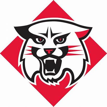 Davidson Wildcats College Colors Ncaa Team Pantone